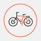В Нью-Йорке прошел велопробег, посвященный столетию БНР